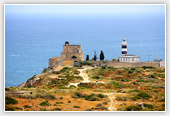 Sardinia Lighthouse on Coast - Sardinia